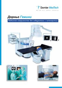 thumbnail of Broshyura-Gemini–russk[1]